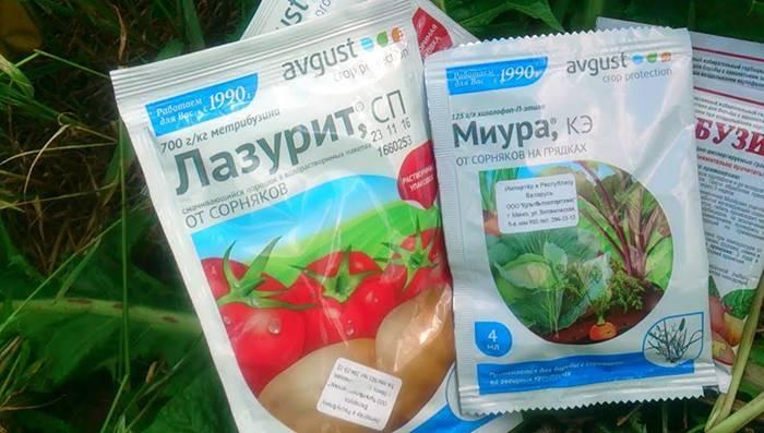 Обработка картофеля от сорняков: применение гербицида