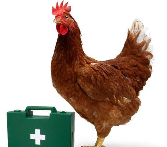 Дитрим для цыплят бройлеров