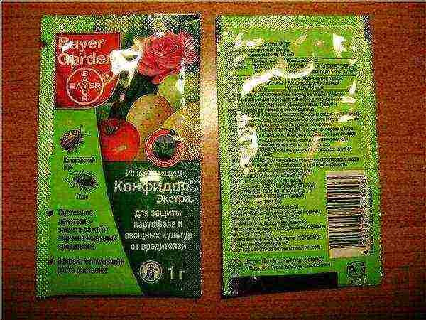 Препарат от колорадского жука командор: эффективность, применение
