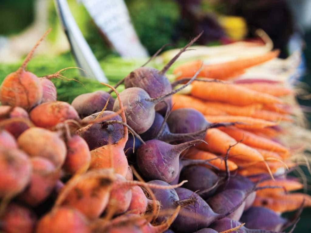 После каких культур можно сажать морковь?