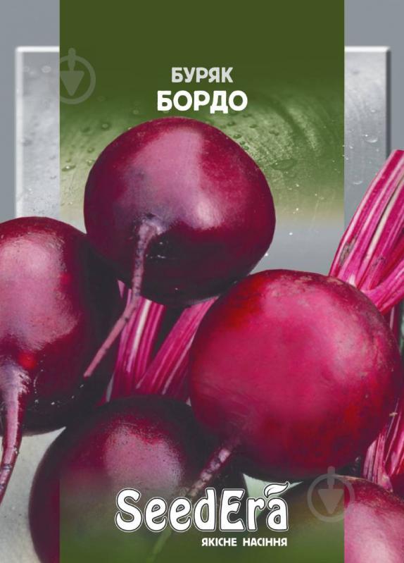 Сорт свеклы «бордо»: описание, фото и отзывы («бордо 237» и «бордо односемянная»)