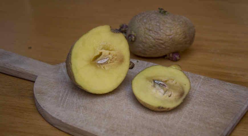 Заболевания картошки