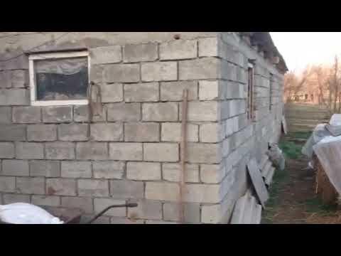 Как построить помещение для стойлового содержания быков (сарай своими руками)