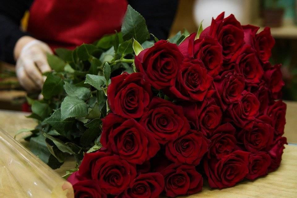 Самые удивительные факты о розах