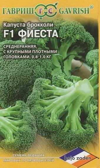 Виды капусты: фото, названия лучших сортов и описание характеристик