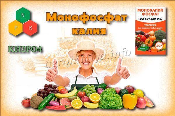 Монофосфат калия: как применять на даче для увеличения урожая