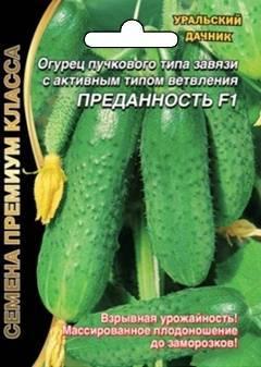 Описание и особенности выращивания гибрида огурцов «атос f1»