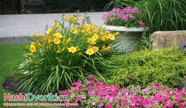 Как избавиться от сорняков на газоне и в цветнике – 5 экосоветов