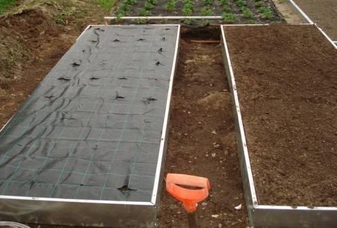Выращивание клубники в трубах пвх – инструкция для начинающих с видео