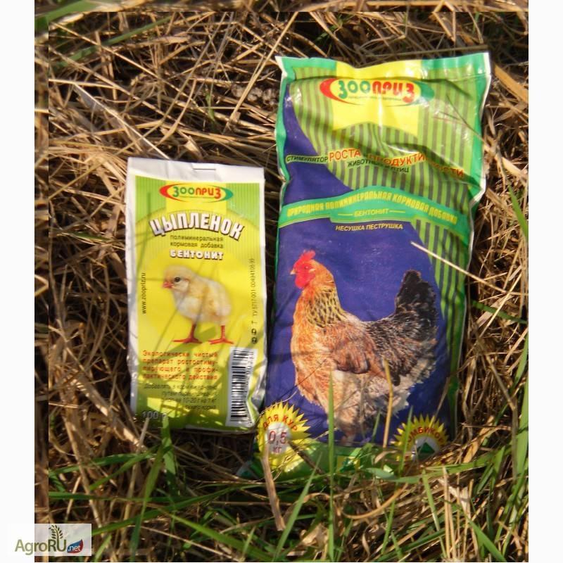 Суточное питание курицы несушки: нормы и подробный рацион на 1 день