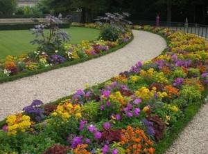 Клумбы непрерывного цветения – схемы с описанием цветов