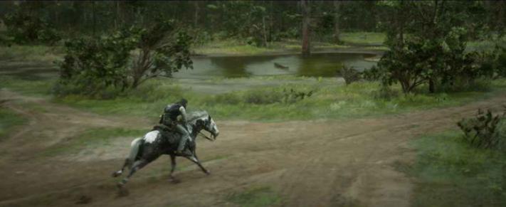 Управление лошадью: как это делать легко?
