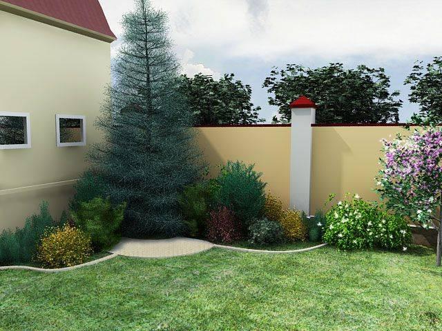 Туя на клумбе в сочетании с цветами и другими хвойными растениями