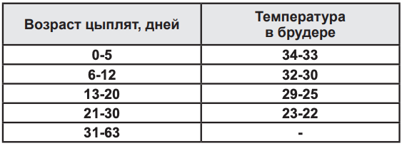 Нормы температурного режима при содержании бройлеров