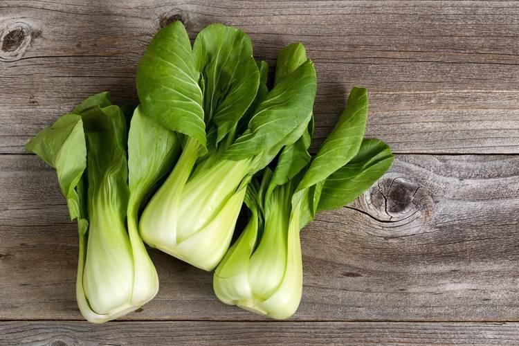 Все о китайской капусте: лучшие сорта, как посеять и вырастить в огороде