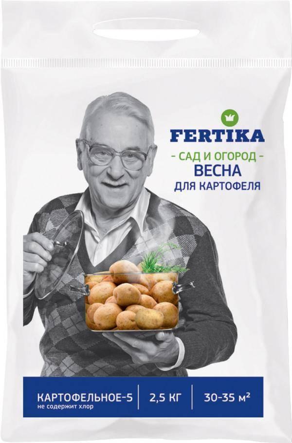 Сорт картофеля взрывной: характеристика, отзывы, выращивание