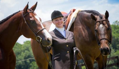 Разведение лошадей как бизнес: способы разведения