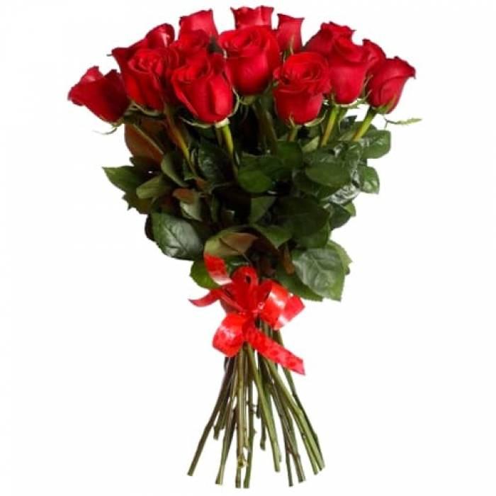 Cорта белых роз с описанием и фото цветущих кустов