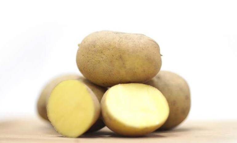 Картофель каратоп: особенности сорта