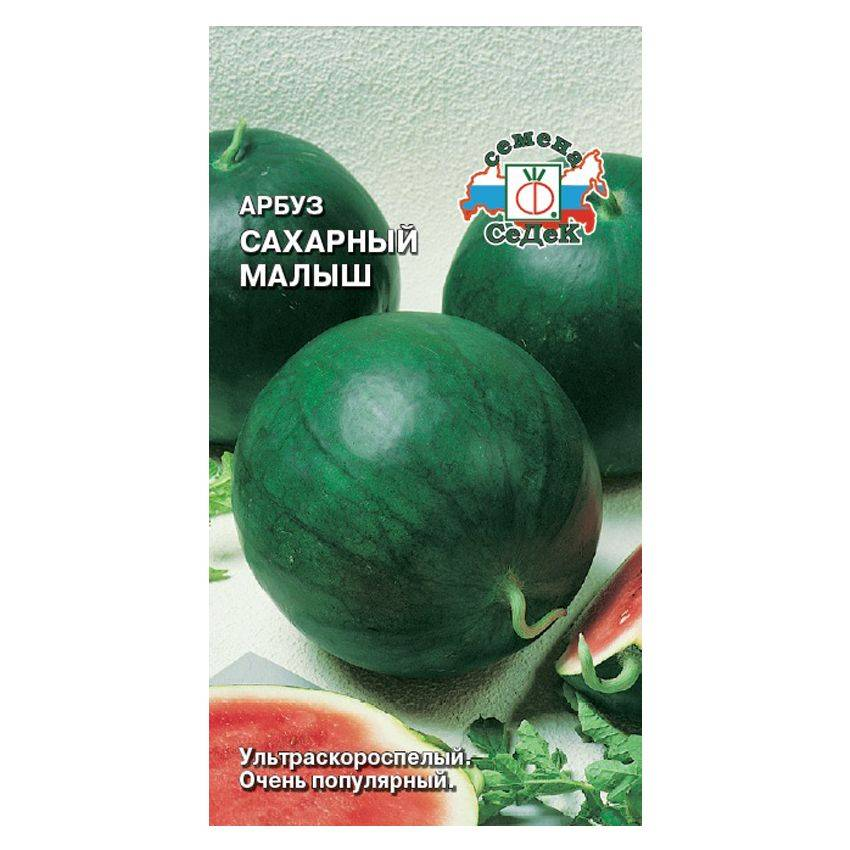 Все о сорте арбуза Сахарный Малыш: описание, агротехника выращивания