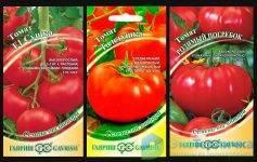 Обзор сортов томатов для выращивания на урале - есть из чего выбрать