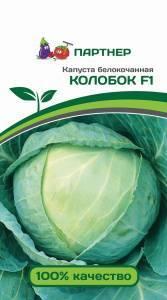 Капуста «колобок» описание позднего сорта и личный опыт выращивания