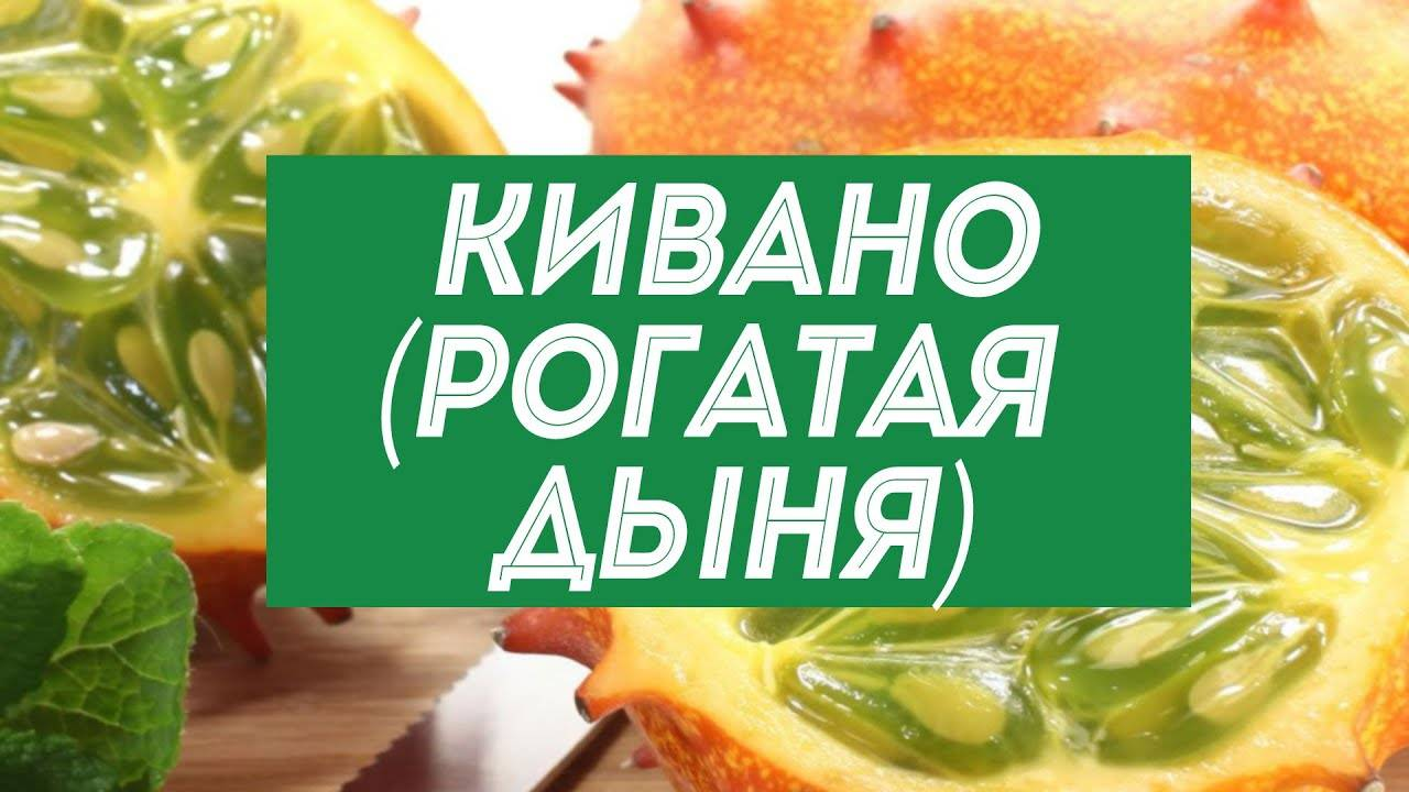 Кивано: что такое и как его едят