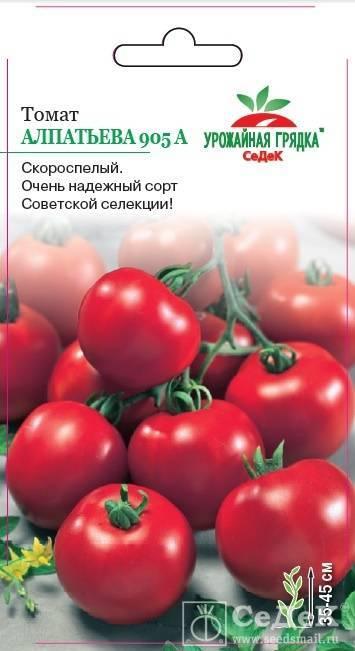 """Томат """"сибирское яблоко"""": характеристика и описание сорта, рекомендации по выращиванию и урожайность помидор"""