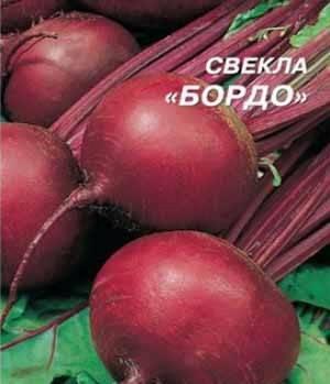 Свекла боро f1: описание, история вида, способы применения и подробная инструкция по выращиванию и хранению сорта
