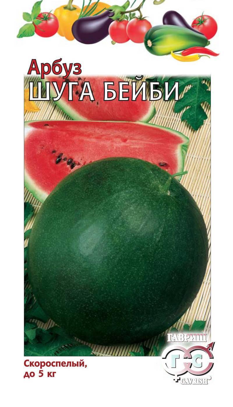 Арбуз шуга бейби: описание и правила выращивания