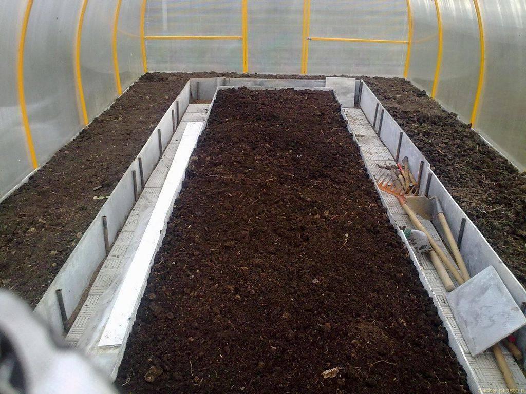 Как выращивать огурцы в мешках: посадка и уход