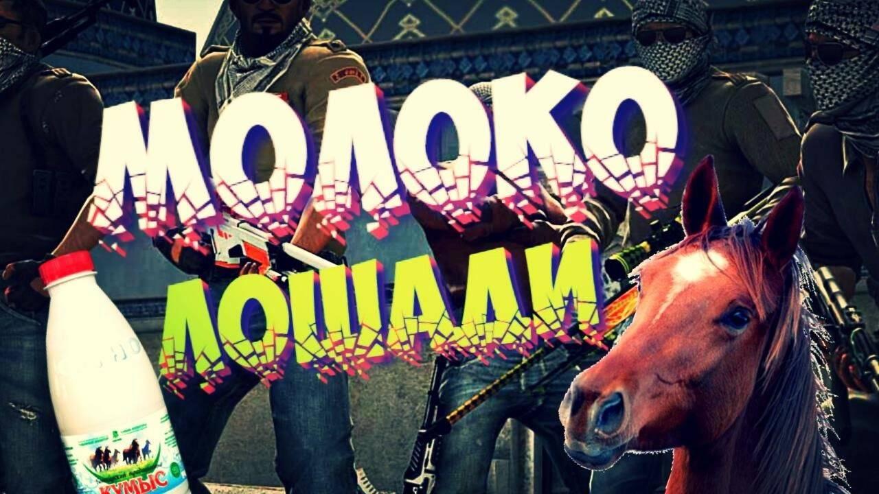 Молоко лошади