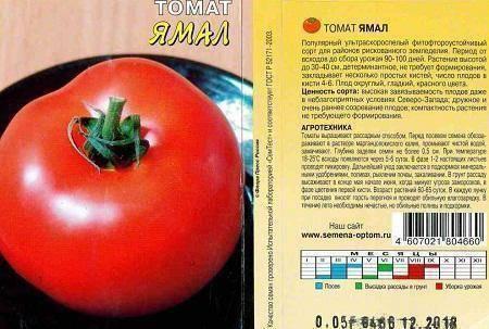 Какие сорта томатов самые устойчивые к болезням? учимся покупать правильный посадочный материал