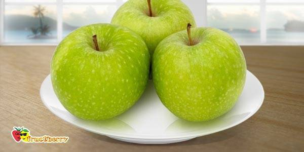 Яблоня ренет симиренко — классический зимний сорт