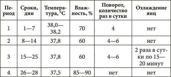 Инкубация утиных яиц в домашних условиях: режим инкубатора, таблица сроков, график закладки