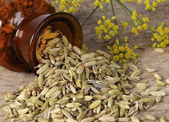 Чай из фенхеля — полезные свойства и вред | польза и вред