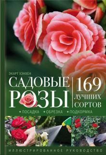 Кустовые розы: лучшие сорта и особенности выращивания