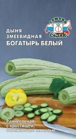 Cорта дыни для средней полосы россии с описанием