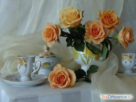 Как сделать так, что бы розы в вазе простояли долго?