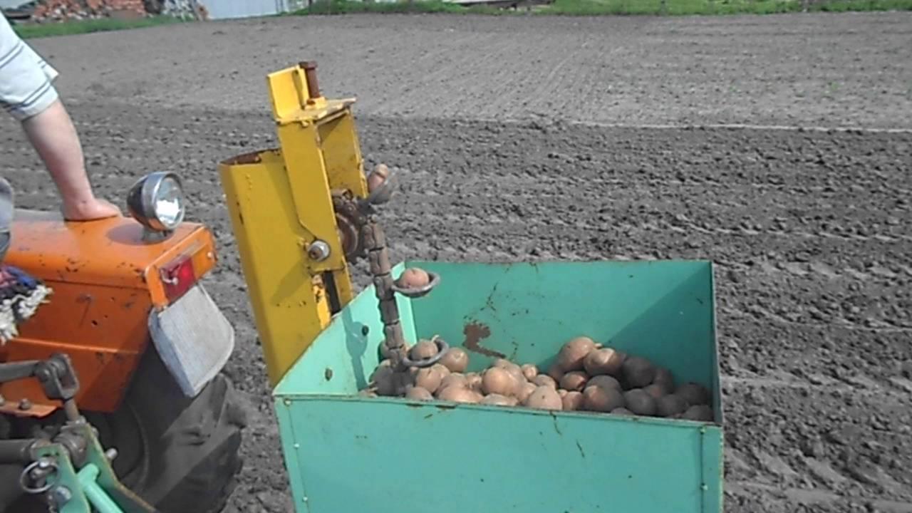Посадка картофеля плугом (под мотоблок и ручным способом)