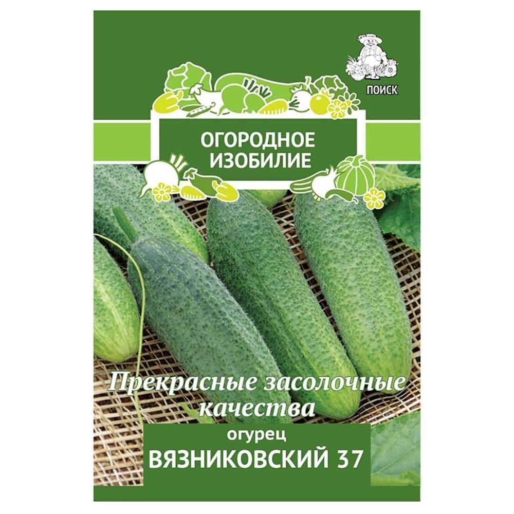 Огурец «нежинский» — описание сорта и агротехника выращивания