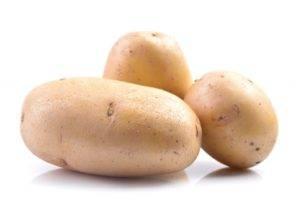 Характеристика среднеспелого картофеля «сантана»: описание сорта и фото