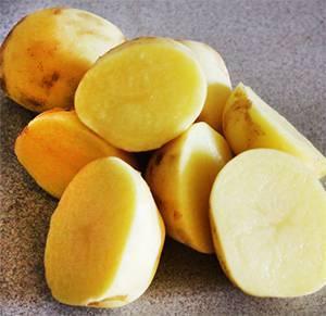 Картофель вр 808: описание сорта, его характеристика, фото