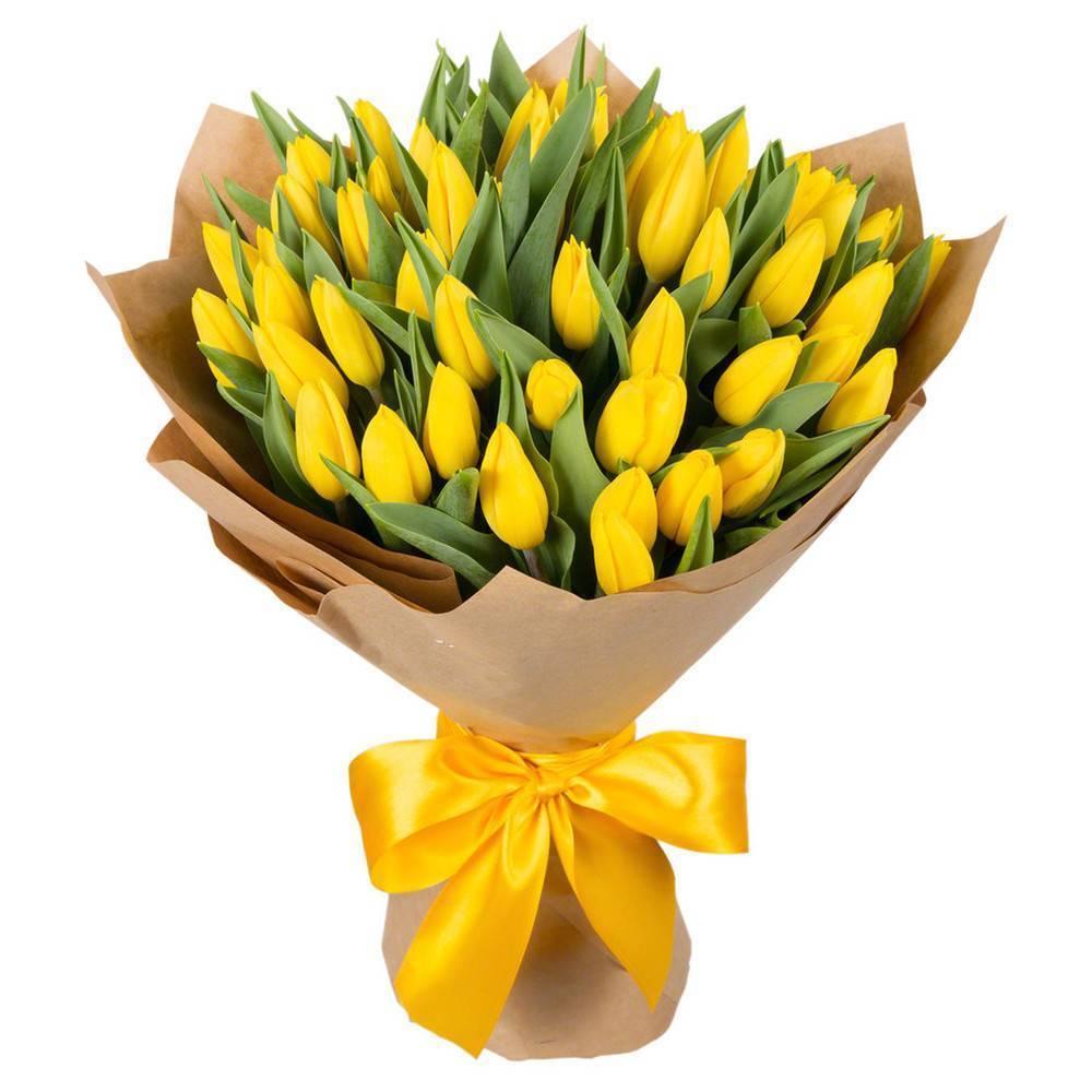 Тюльпаны: посадка и уход в открытом грунте — лучшие советы!