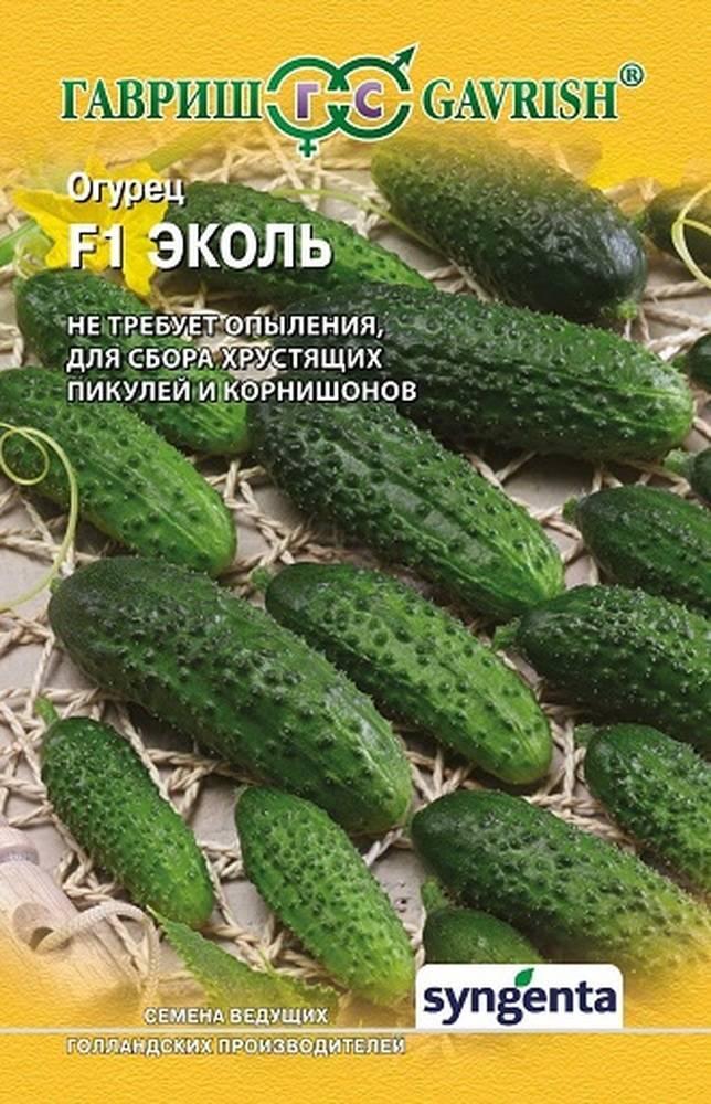 Огурцы эколь f1 — описание сорта с фото, посадка и уход