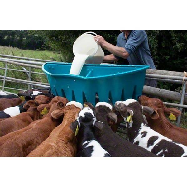 Выпойка телят без коровы