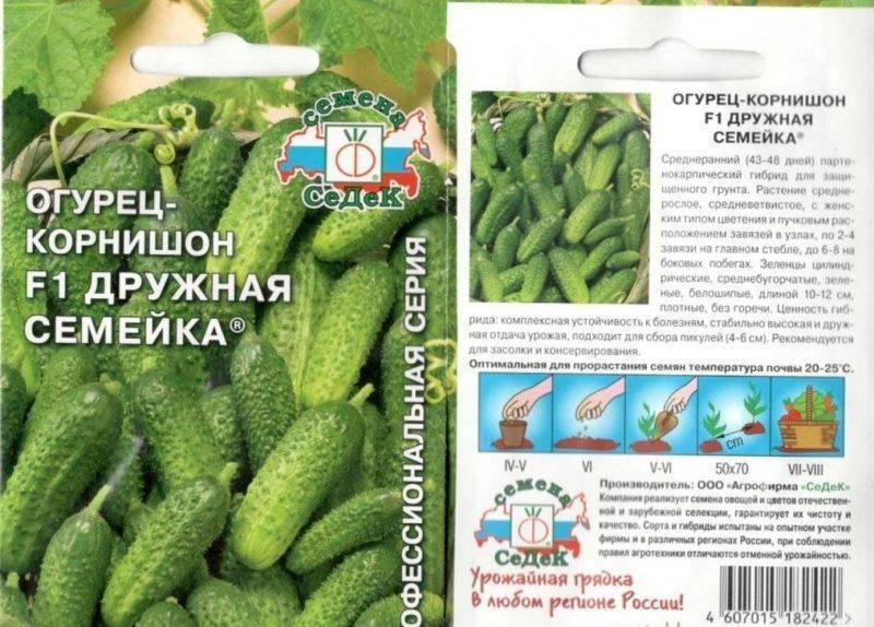 Гибрид огурец-корнишон «дружная семейка f1»: фото, видео, описание, посадка, характеристика, урожайность, отзывы