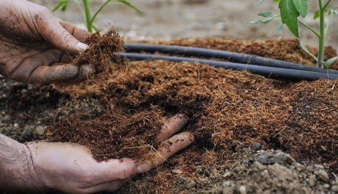 Основные правила обработки целины и подготовки земли под огород