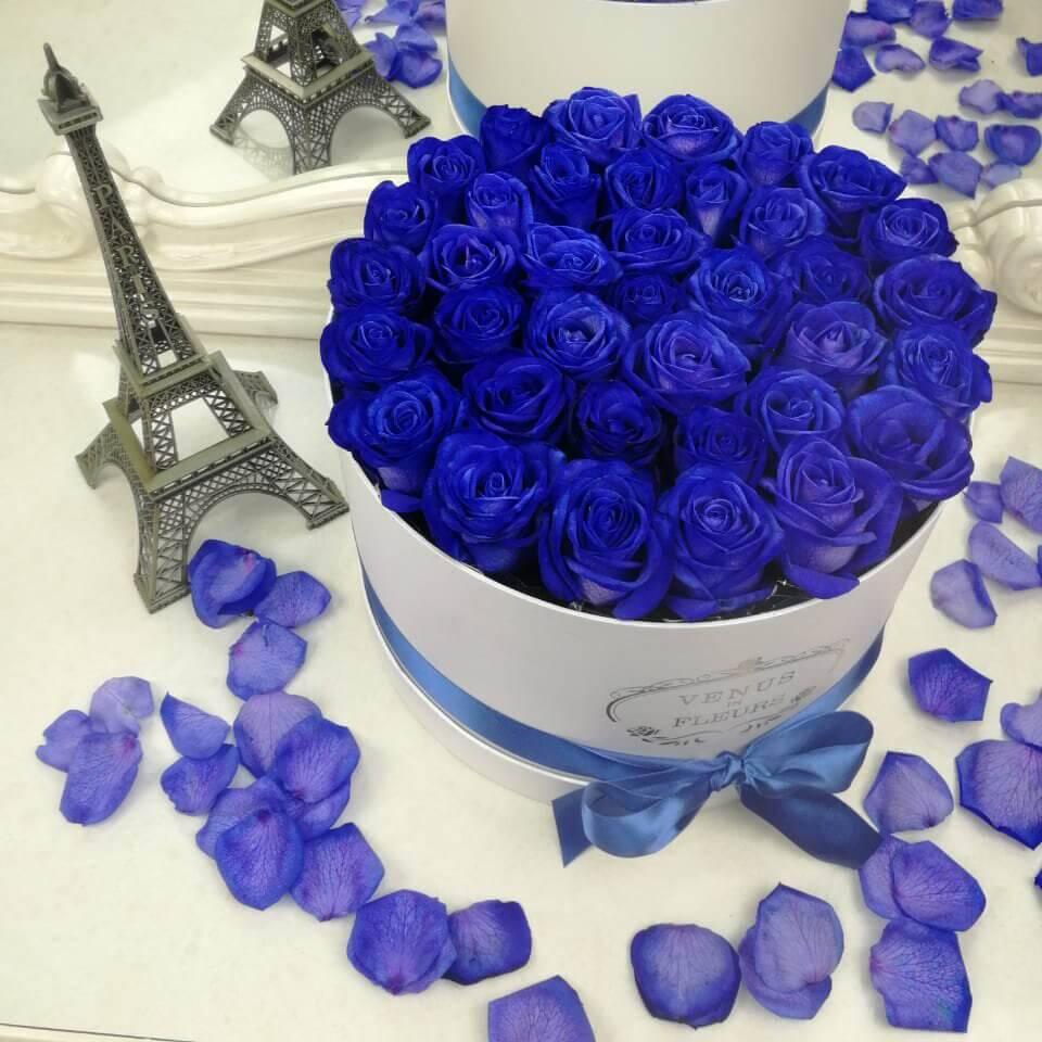 Лучшие сорта роз по цветам