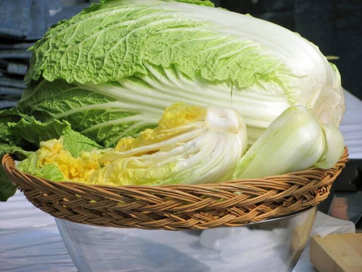 Выращивание пекинской капусты и уход за ней